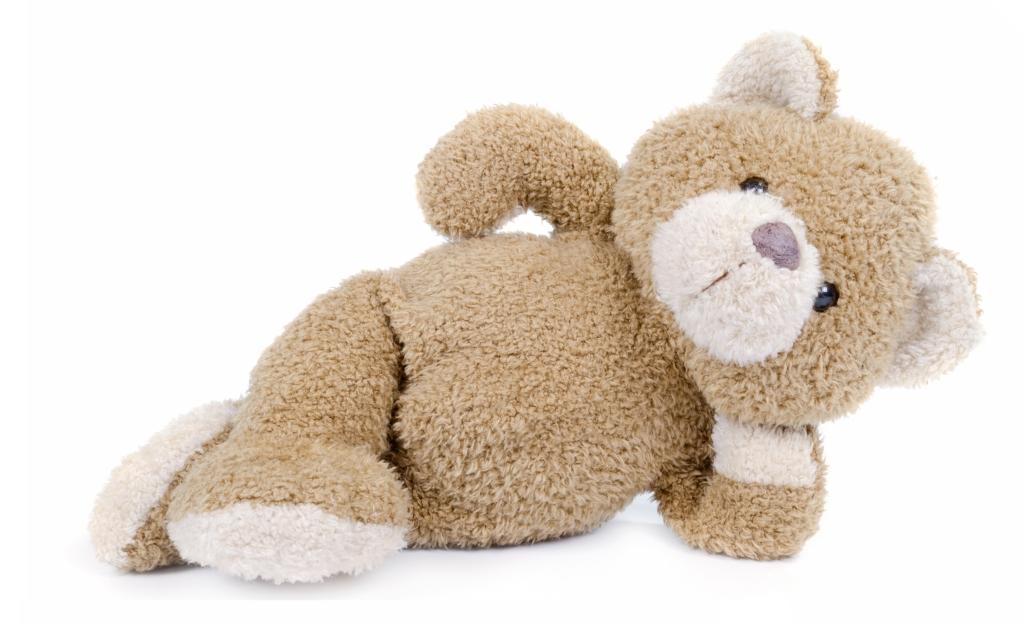 For the Love of God, Pleeeeeaaase Stop Buying Giant Teddies loveanddribble.com