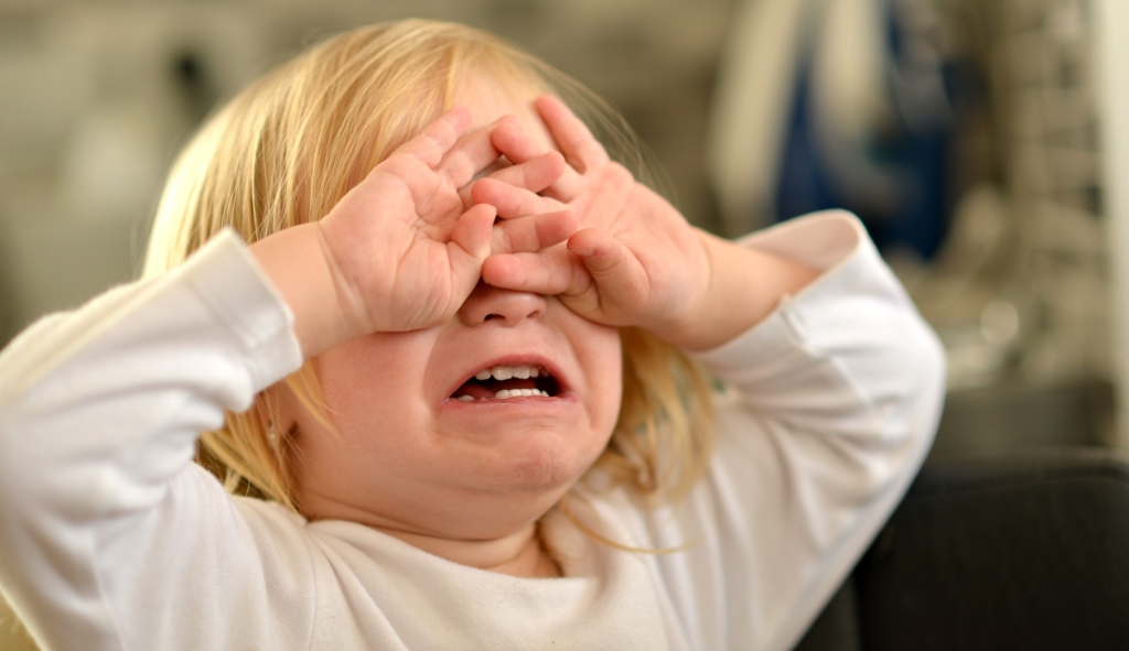 The Dawn of the Toddler loveanddribble.com toddler cry tantrum